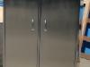 Шкаф для инвентаря (фармацевтическое производство)